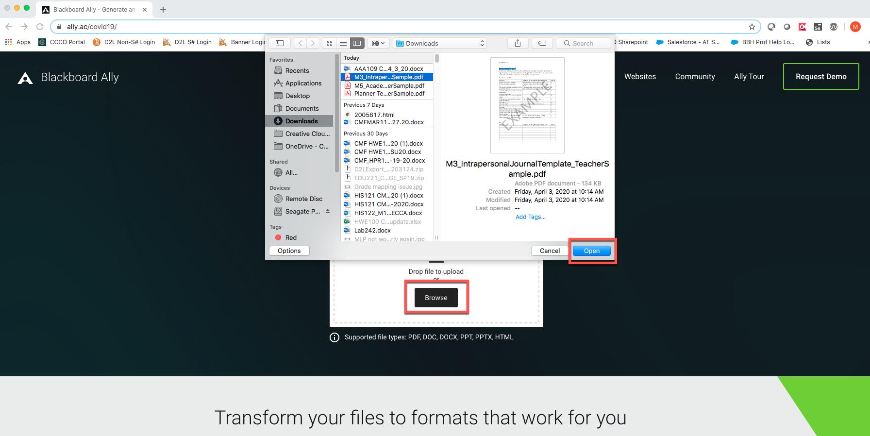Blackboard Ally Choose File