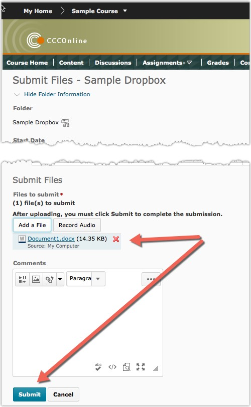Dropbox submission screen with file uploaded