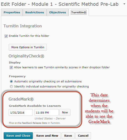 Turnitin Assignment More Options window